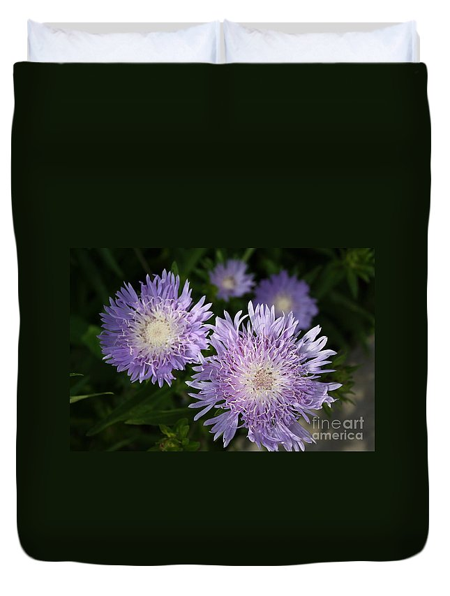 Flowers Duvet Cover featuring the photograph Purple Blossoms by Dora Sofia Caputo Photographic Design and Fine Art