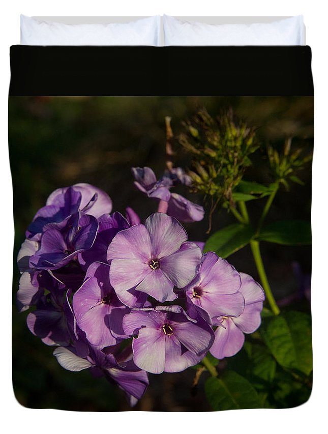 Purple Duvet Cover featuring the photograph Purple Cluster Of Flowers by Douglas Barnett