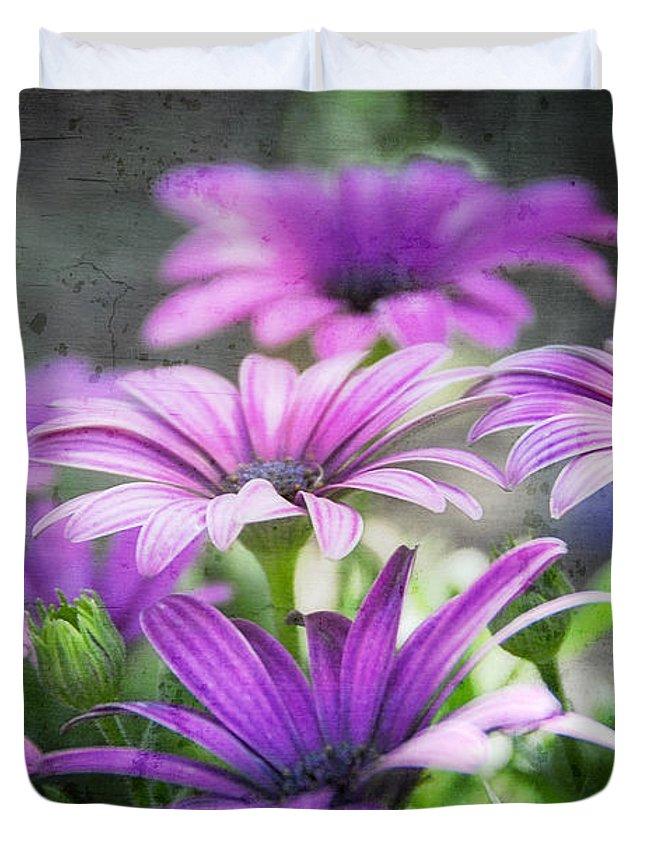 Purple Daisies Duvet Cover featuring the photograph Purple Daisies by Saija Lehtonen