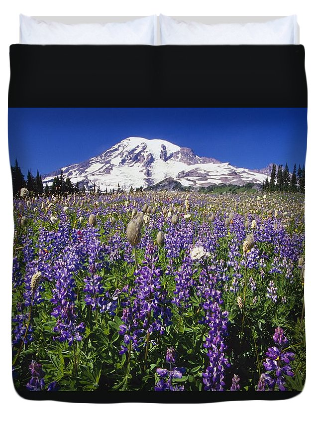 Washington Duvet Cover featuring the photograph Purple Flowers Blooming Beneath Mount by Natural Selection Craig Tuttle