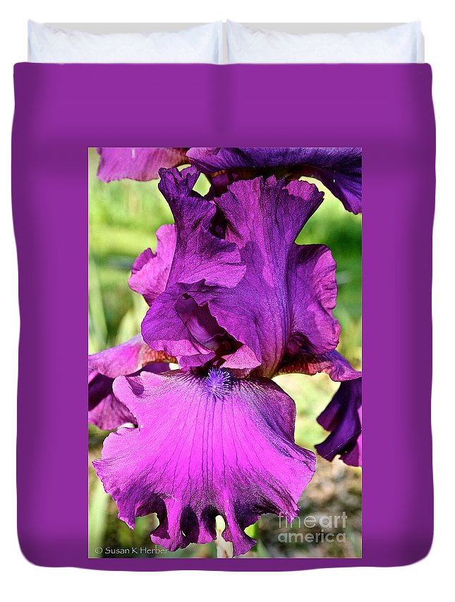 Plant Duvet Cover featuring the photograph Purple Purity by Susan Herber