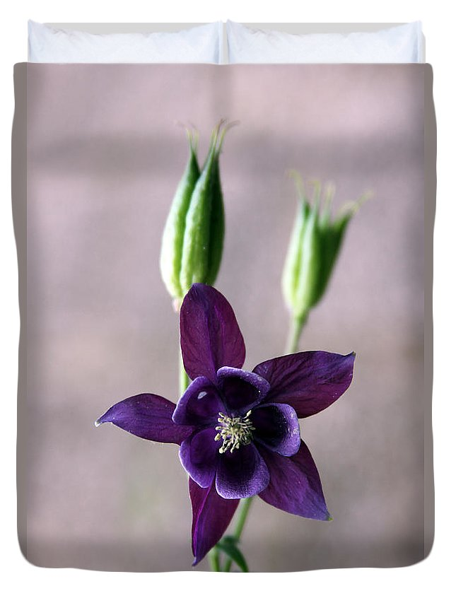 Flower Duvet Cover featuring the photograph Purple Star by Carolyn Stagger Cokley
