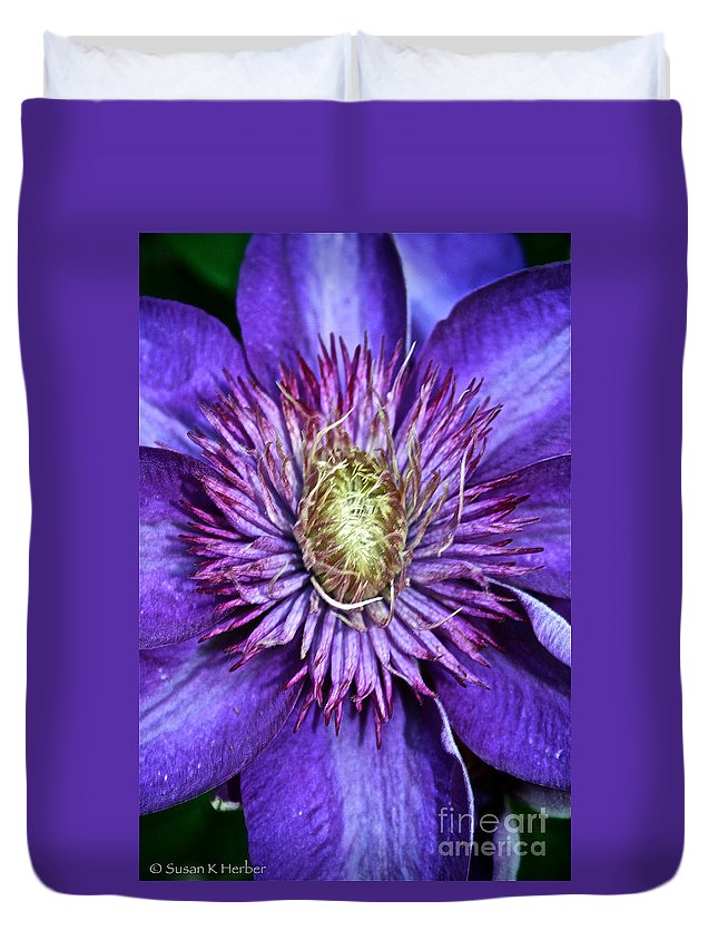 Plant Duvet Cover featuring the photograph Purple Star by Susan Herber