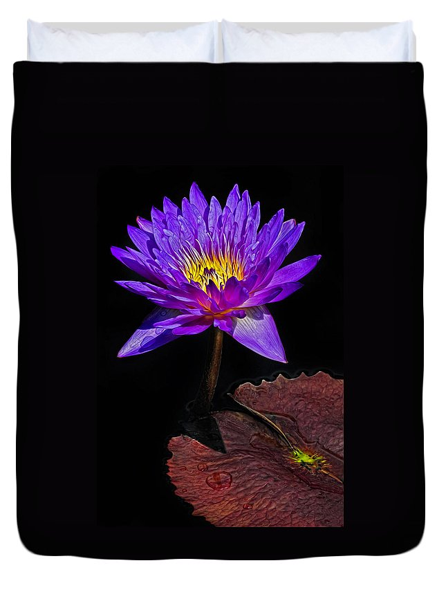 Waterlily Duvet Cover featuring the photograph Purple Waterlily by Dave Mills