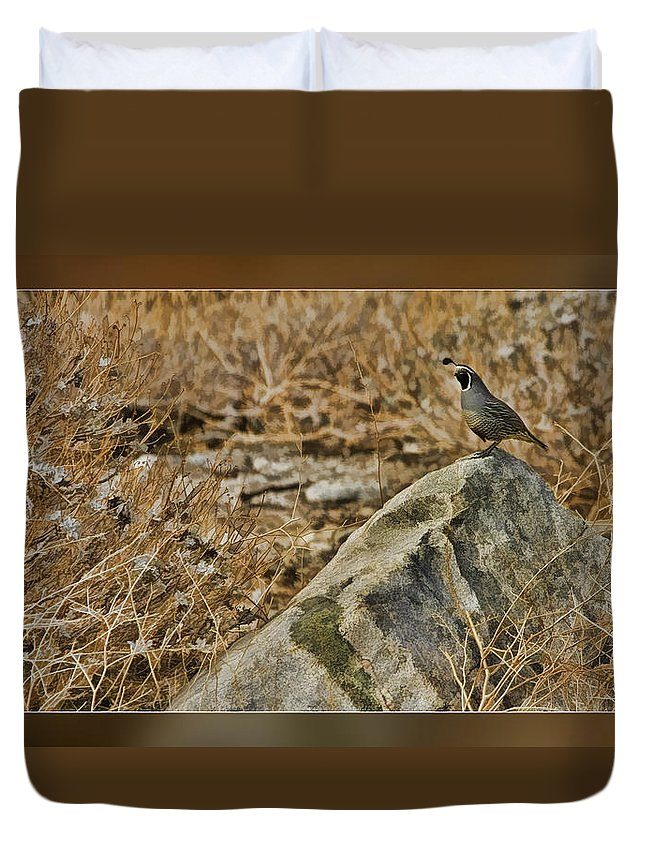Fine Art Photographers Duvet Cover featuring the photograph Quail On Rock by Blake Richards