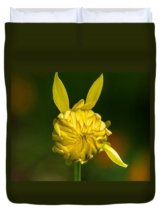 Flower Duvet Cover featuring the photograph Rabbit Flower by Greg Nyquist