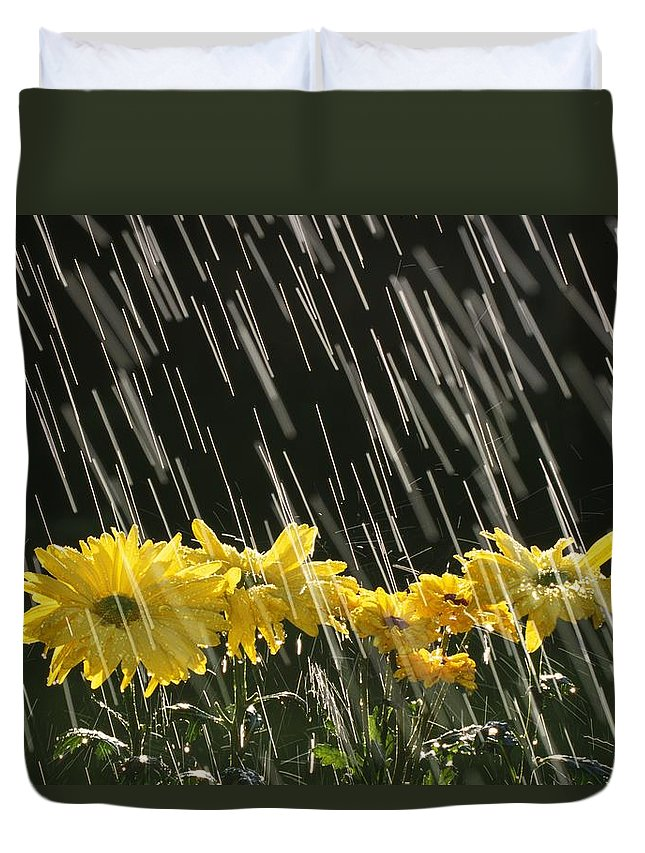 Weather Duvet Cover featuring the photograph Rain On Yellow Daisies by Natural Selection Craig Tuttle