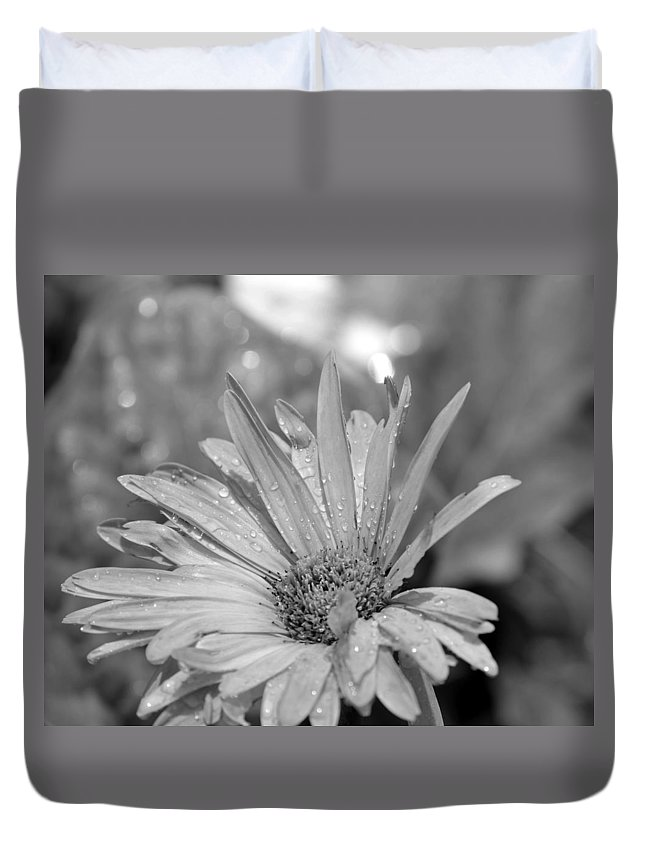 Raindrops Duvet Cover featuring the photograph Raindrops On Daisy by Maria Urso
