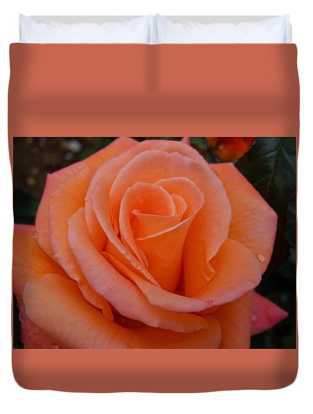 Flowers Duvet Cover featuring the photograph Raindrops On Roses Seven by Diana Hatcher