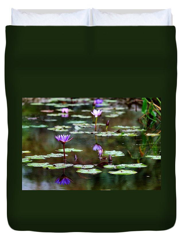 Roy Williams Duvet Cover featuring the photograph Rainy Day Lotus Flower Reflections Iv by Roy Williams