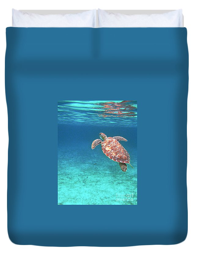 Turtle Duvet Cover featuring the photograph Reaching For Air by Li Newton