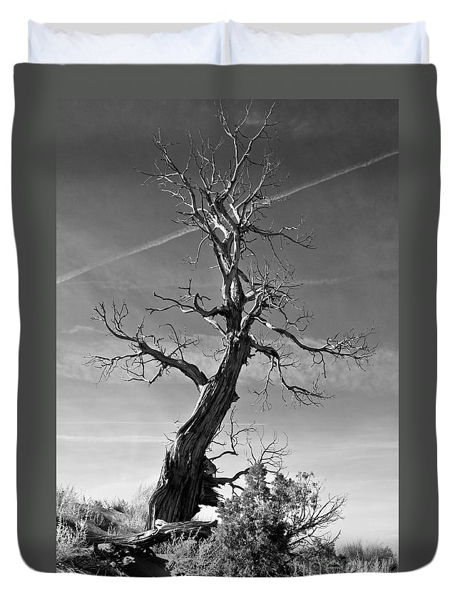 Monument Valley Duvet Cover featuring the photograph Reaching For The Sky by Jim Chamberlain