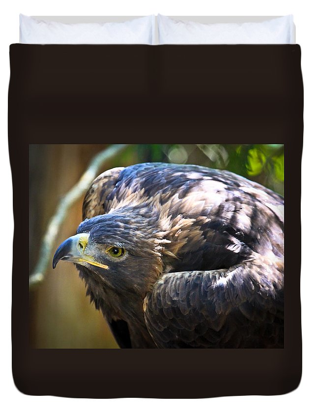 Golden Eagle Duvet Cover featuring the photograph Ready To Pounce by Steve McKinzie