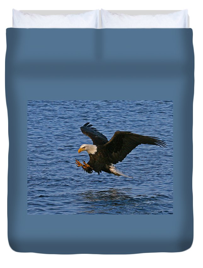Alaska Duvet Cover featuring the photograph Ready To Strike by Doug Lloyd