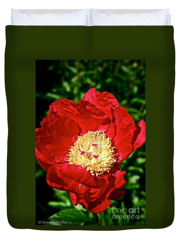 Plant Duvet Cover featuring the photograph Red And Yellow by Susan Herber