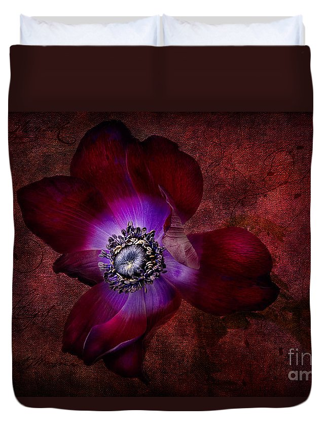 Anemone Duvet Cover featuring the photograph Red Anemone by Ann Garrett
