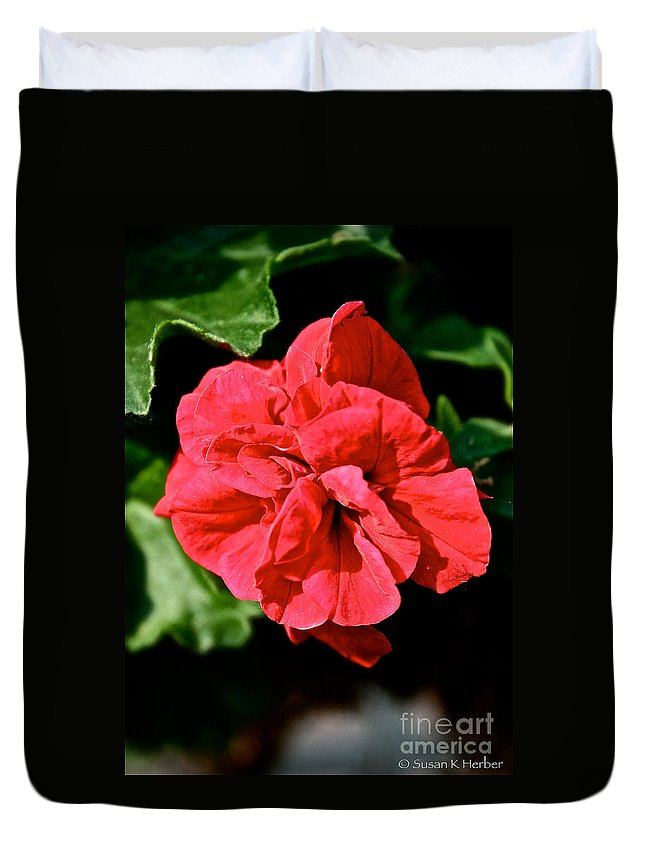 Plant Duvet Cover featuring the photograph Red Begonia by Susan Herber