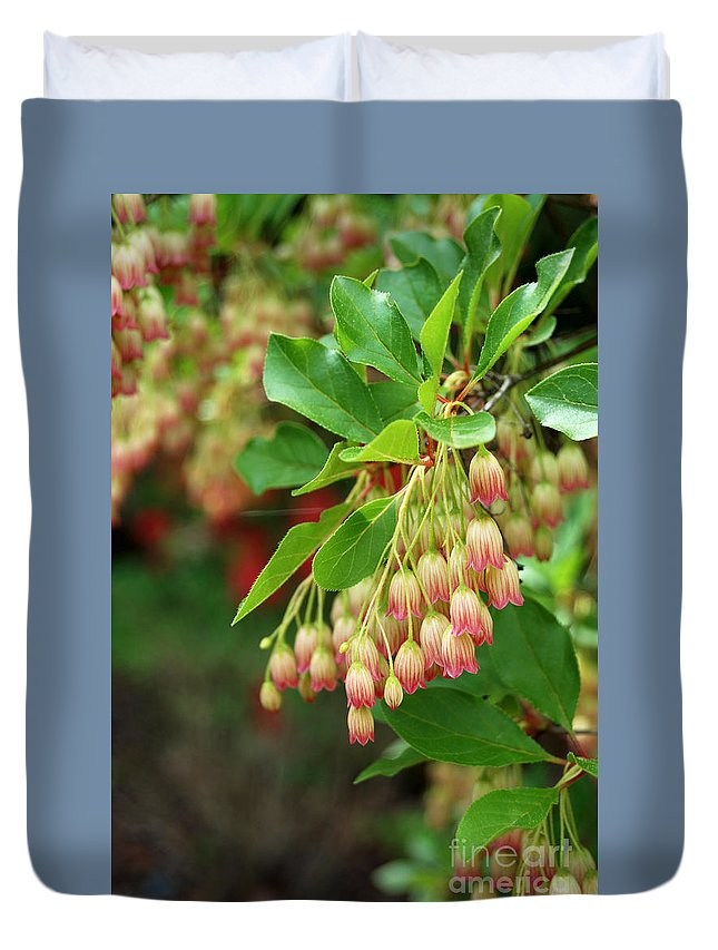 Red Bell Flowers Duvet Cover featuring the photograph Red Bell Flowers 3 by Eva Kaufman