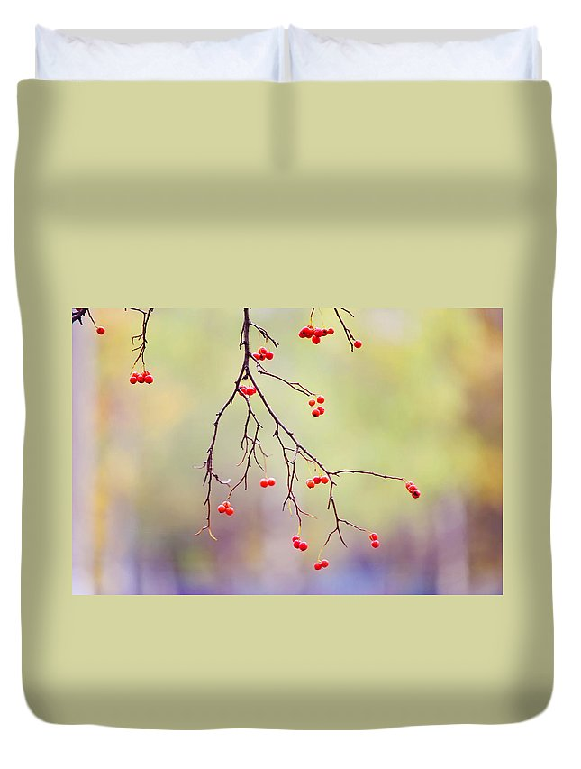 Autumn Duvet Cover featuring the photograph Red Berrries by Jenny Rainbow