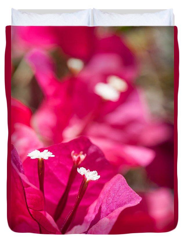 Ralf Duvet Cover featuring the photograph red Bougainvillea by Ralf Kaiser