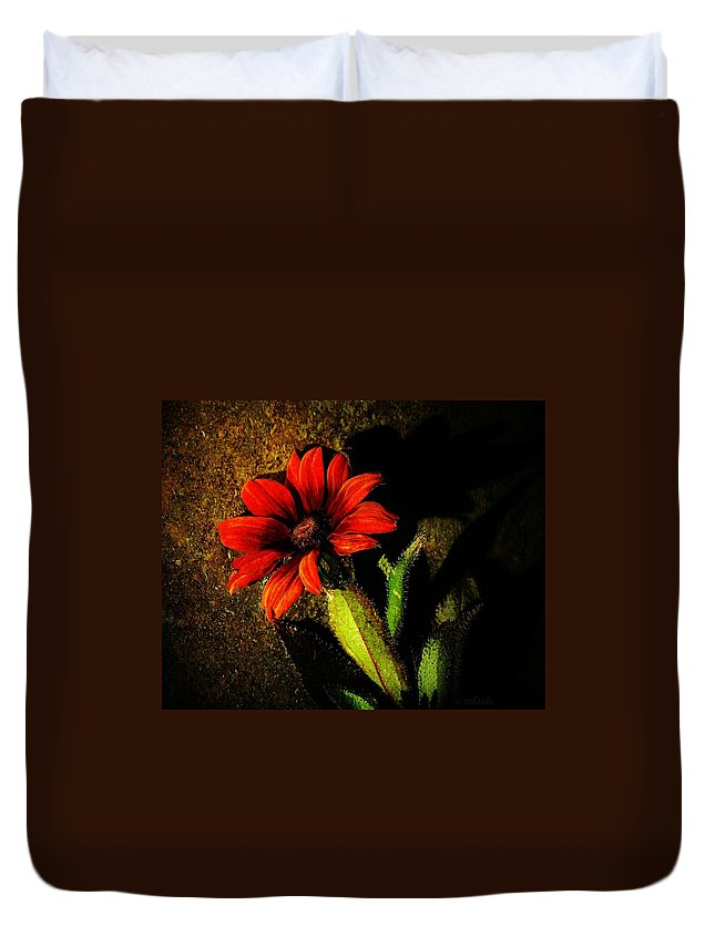 Coneflower Duvet Cover featuring the photograph Red Coneflower by Chris Berry