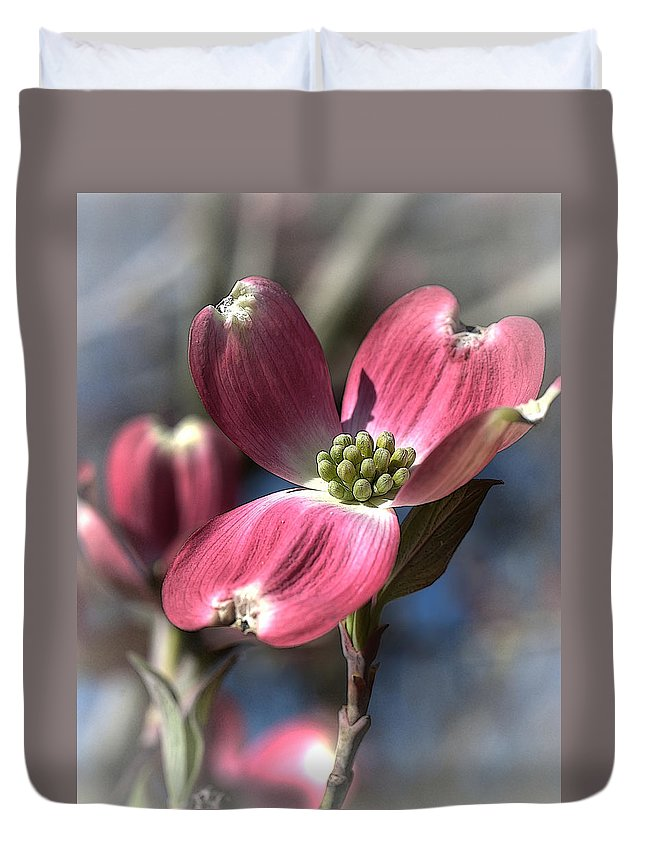 Flower Duvet Cover featuring the photograph Red Dogwood by Linda Clifford