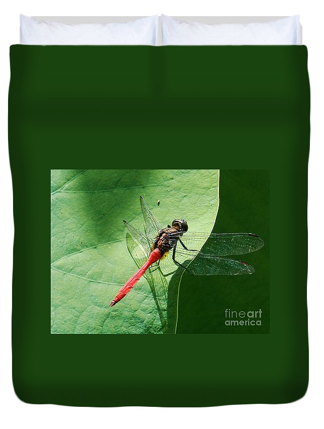 Photography Duvet Cover featuring the photograph Red Dragonfly     by Kaye Menner