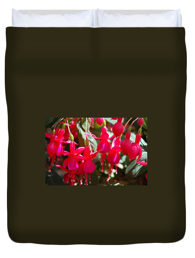 Flower Duvet Cover featuring the photograph Red Fuchsias by Amy Fose