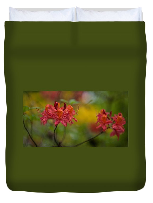 Rhodies Duvet Cover featuring the photograph Red Groups by Mike Reid