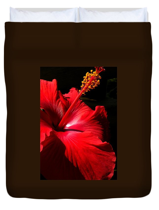 Flowers Duvet Cover featuring the painting Red Hibiscus by Renate Nadi Wesley