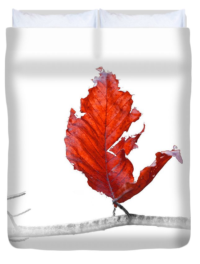 Art Duvet Cover featuring the photograph Red Leaf Of Autumn On White by Randall Nyhof