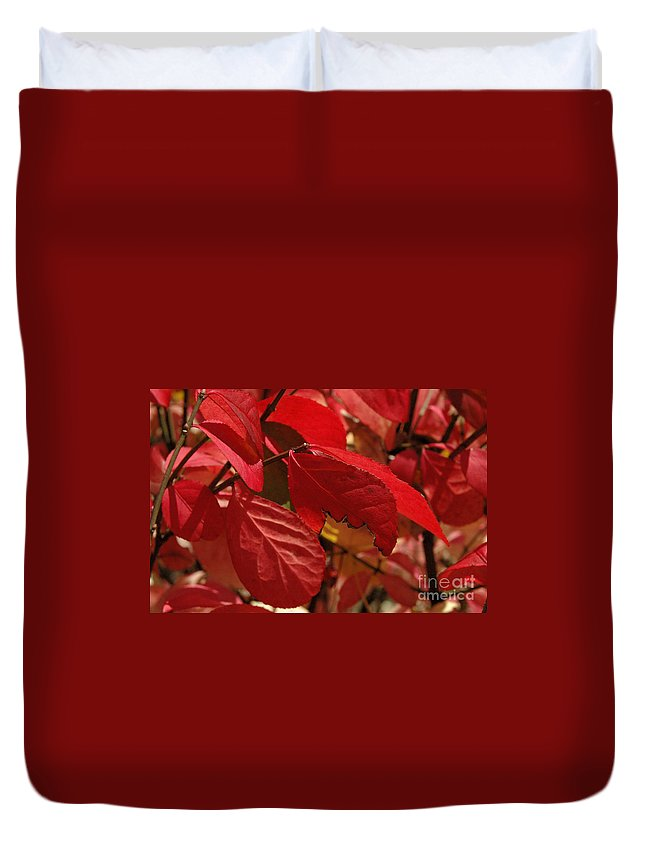 Leaves Duvet Cover featuring the photograph Red Light by Trish Hale