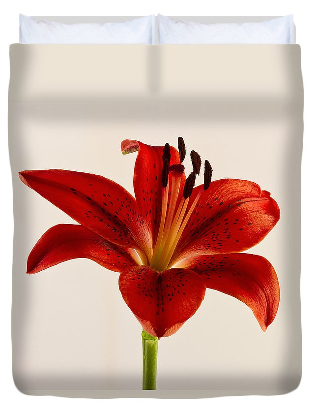 Red Lily Duvet Cover featuring the photograph Red Lily Number Three by Bill Swindaman