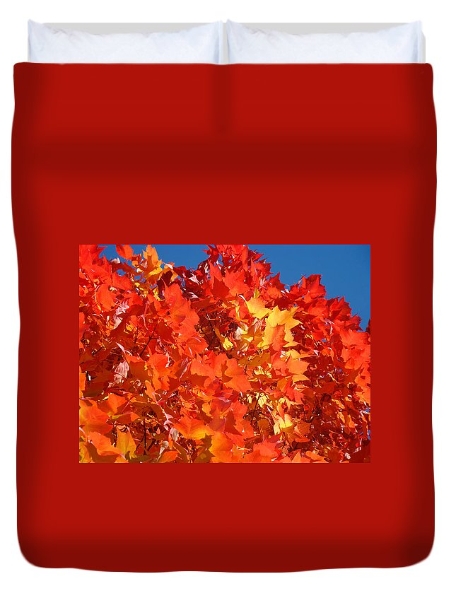 Autumn Duvet Cover featuring the photograph Red Orange Yellow Autumn Leaves Art Prints Vivid Bright by Baslee Troutman