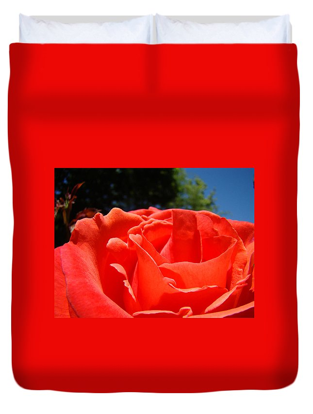 Rose Duvet Cover featuring the photograph Red Rose Flower Fine Art Prints Roses Garden by Baslee Troutman