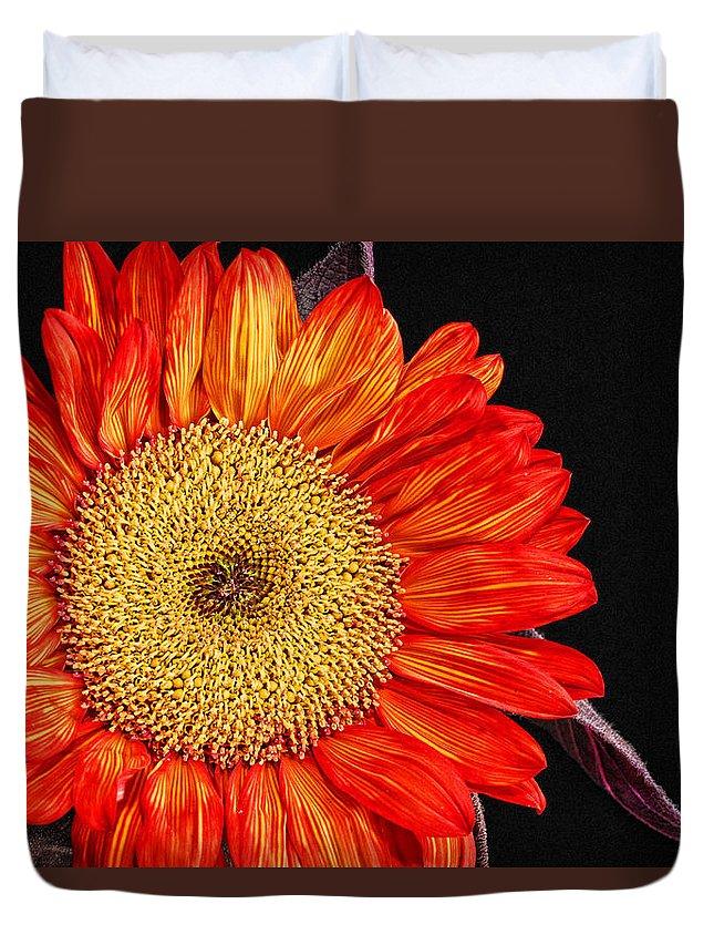 Red Sunflower Duvet Cover featuring the photograph Red Sunflower II by Saija Lehtonen