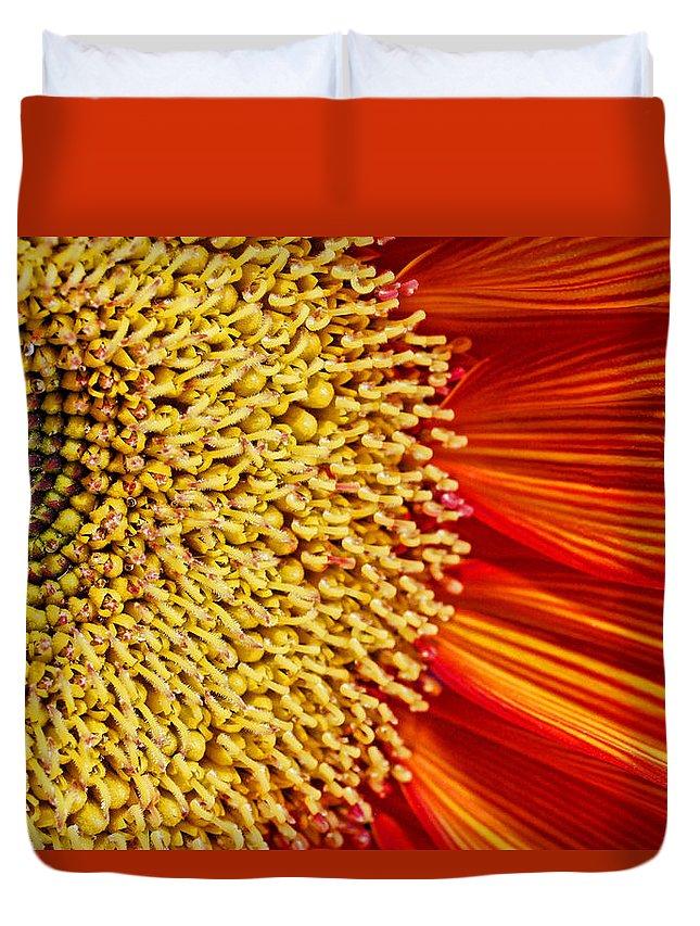 Red Sunflower Duvet Cover featuring the photograph Red Sunflower Viiii by Saija Lehtonen