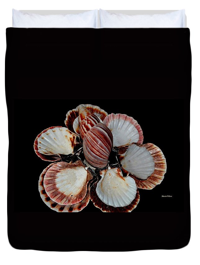 Red Duvet Cover featuring the photograph Red-toned Seashells by Maria Urso