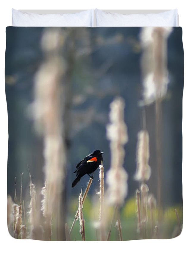 Redwinged Blackbird Duvet Cover featuring the photograph Redwinged Blackbird by Bill Cannon