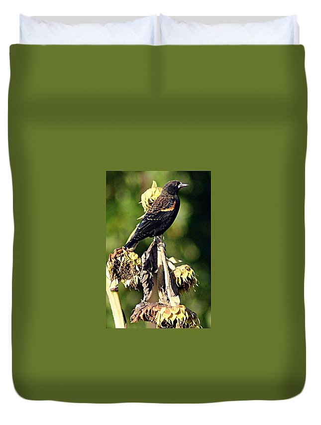Redwinged Duvet Cover featuring the photograph Redwinged Blackbird II by Joe Faherty