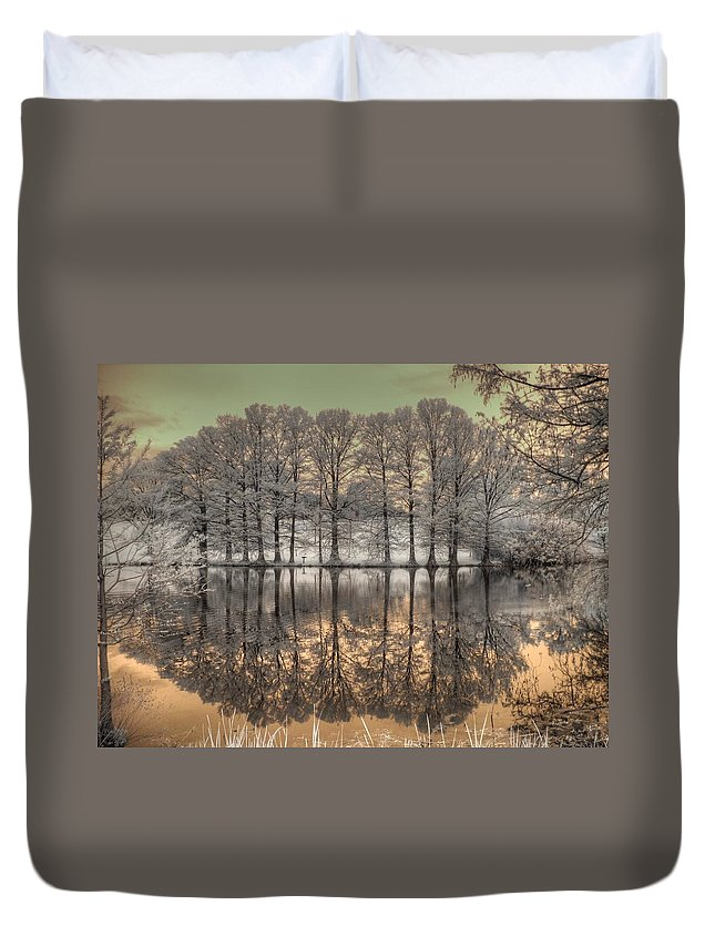 Landscape Duvet Cover featuring the photograph Reflections by Jane Linders
