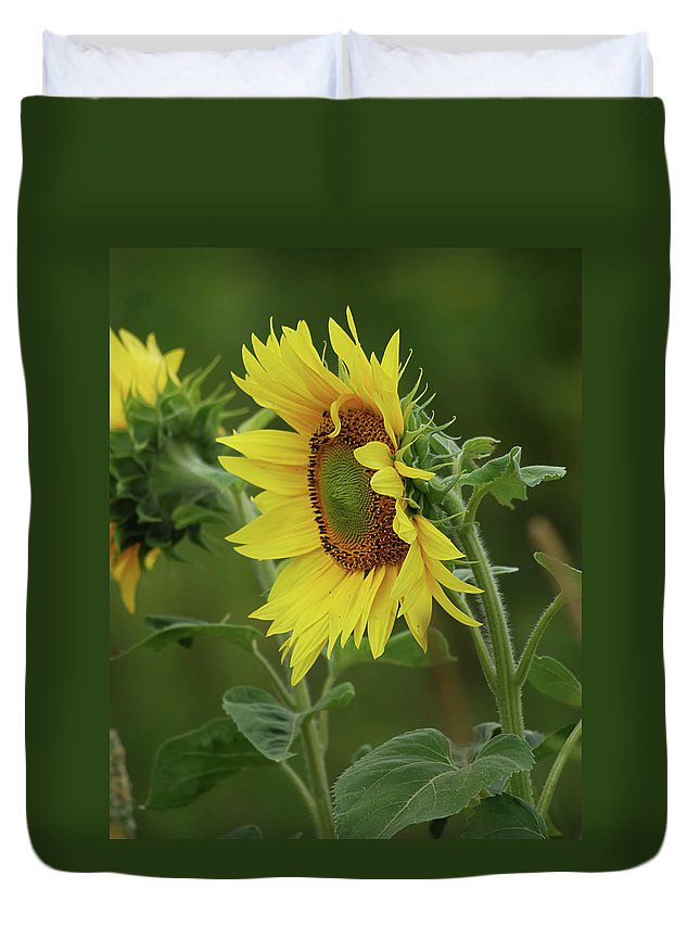 Nature Duvet Cover featuring the photograph Reflective by Susan Capuano