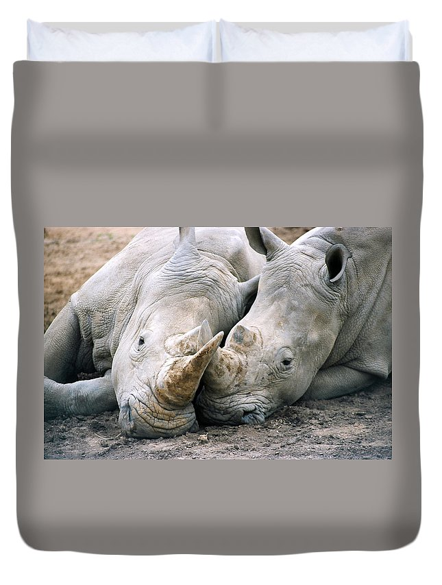 Rhino Duvet Cover featuring the photograph Rhino Love by CJ Clark