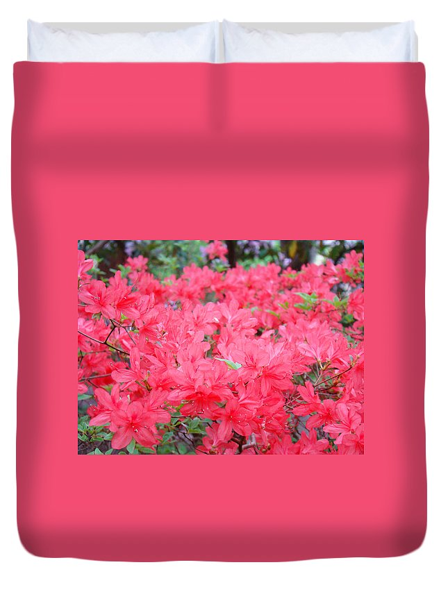 Rhodies Duvet Cover featuring the photograph Rhodies Art Prints Pink Rhododendrons Floral by Baslee Troutman