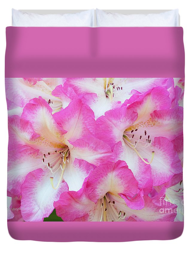 Rhododendron Duvet Cover featuring the photograph Rhododendron- Hot Pink by Regina Geoghan