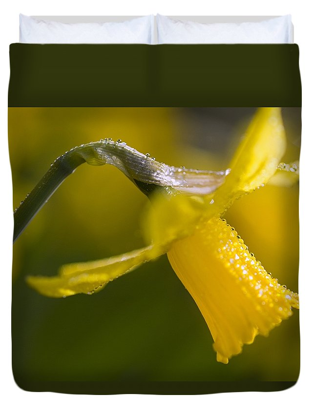 Color Image Duvet Cover featuring the photograph Rhododendrons, Close-up by Craig Tuttle