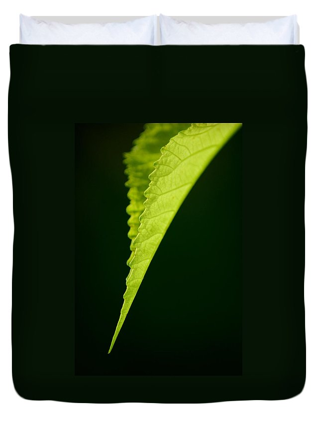 Leaf Duvet Cover featuring the photograph Rigid by David Weeks