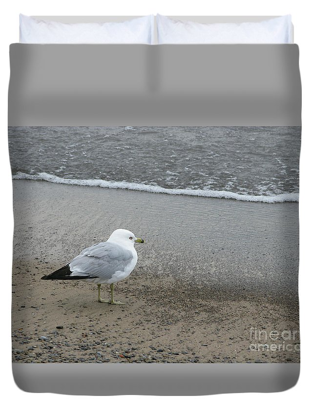 Ring-billed Gull Duvet Cover featuring the photograph Ring-billed Gull by Ann Horn