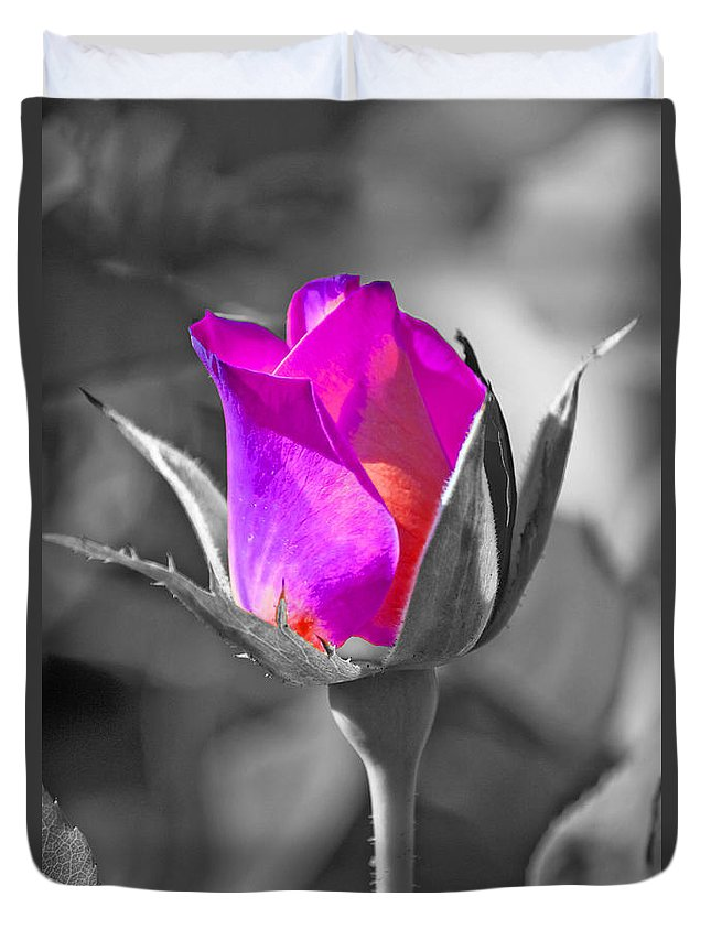 Digitally Hand Colored Duvet Cover featuring the photograph Rita Rosebud II by Linda Dunn