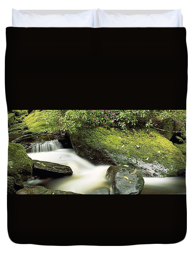 Branch Duvet Cover featuring the photograph River Flowing Through A Forest, Torc by The Irish Image Collection